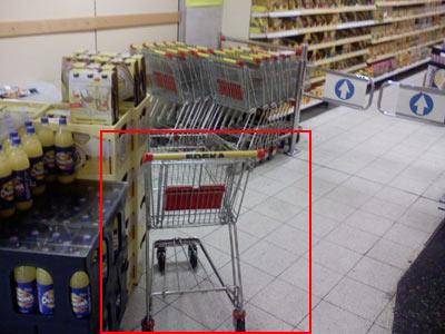 Einkaufswagen - Frau - Supermarkt